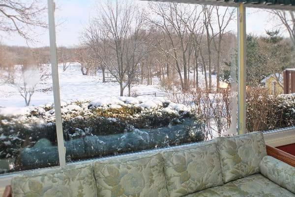 Honeysuckle winter view